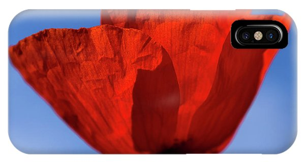 One Red Poppy IPhone Case