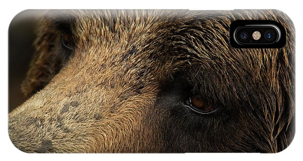 IPhone Case featuring the photograph One Who Sees - Grizzly Bear Art by Jordan Blackstone