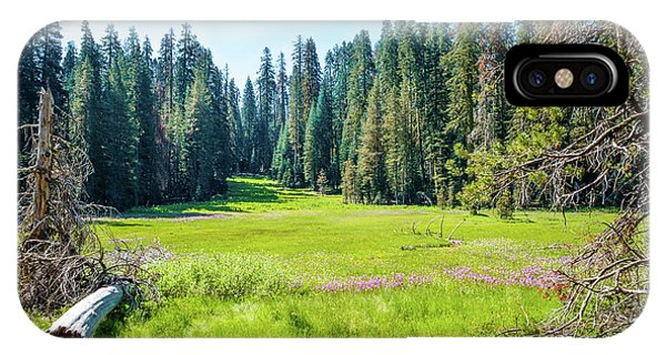Open Meadow- IPhone Case