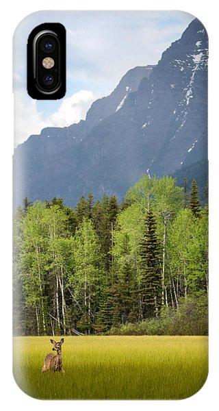 Open Spaces // Glacier National Park  IPhone Case