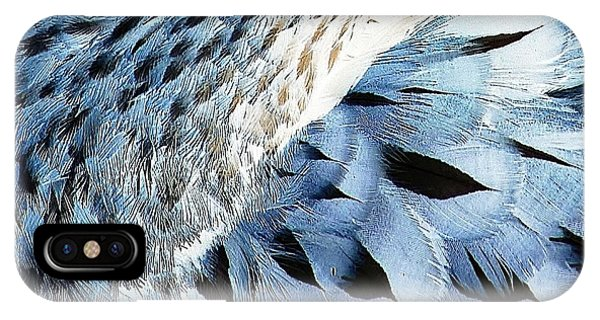 Blue Limpkin IPhone Case