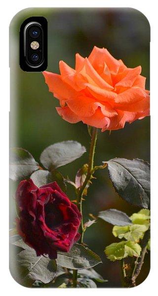 Orange And Black Rose IPhone Case