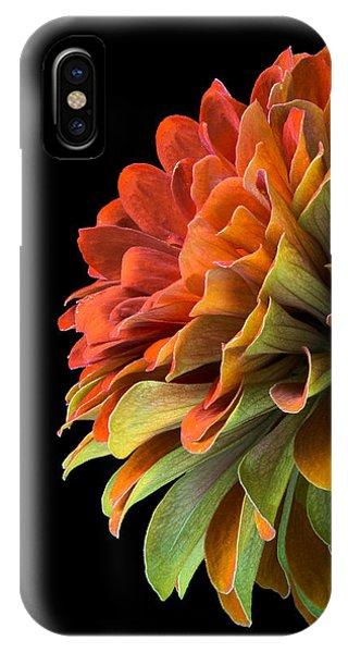 Orange And Green Zinnia  IPhone Case