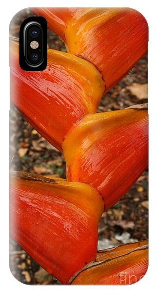 Orange And Red Haleconia IPhone Case