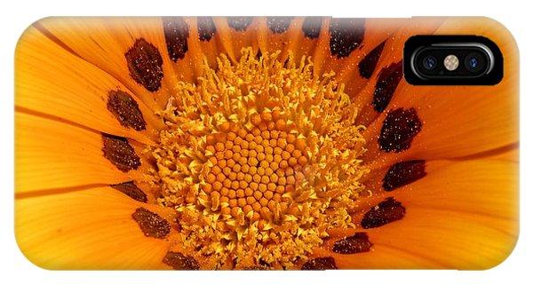 Orange Burst - Daisy IPhone Case