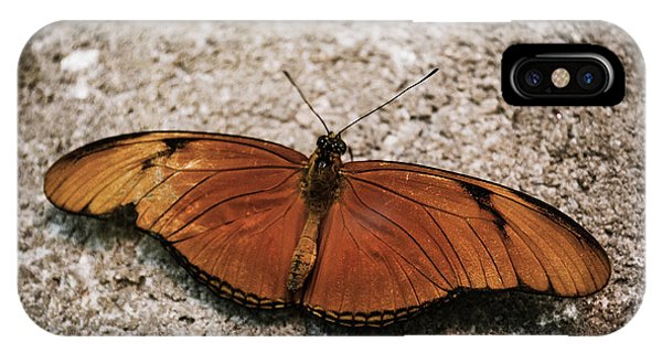 Orange Butterfly IPhone Case