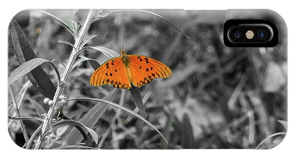 Orange Butterfly In Black And White Background IPhone Case