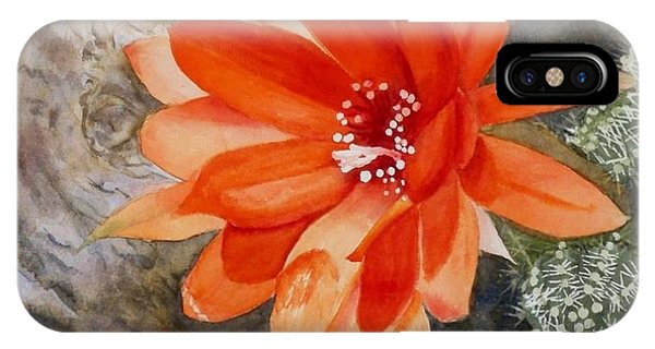 Orange Cactus Flower II IPhone Case