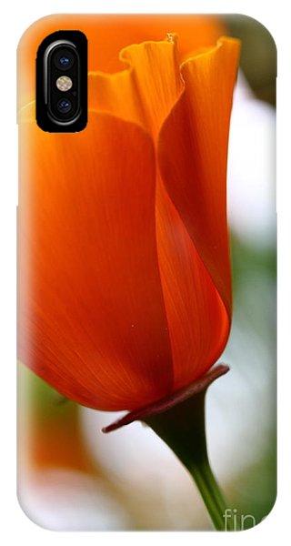 Orange California Poppy . 7d14789 IPhone Case