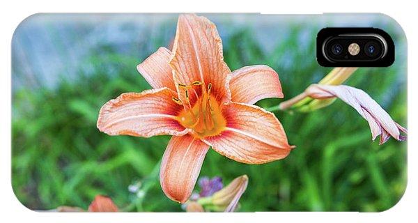 Orange Daylily IPhone Case