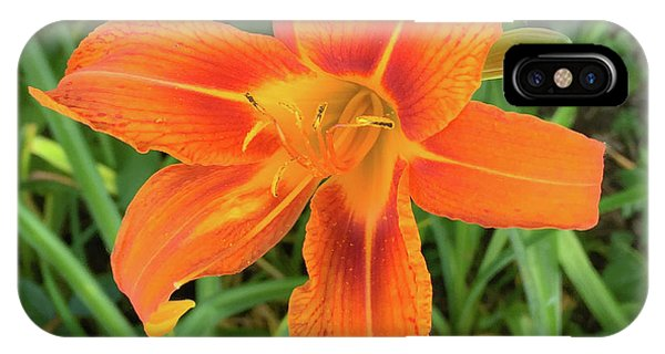 IPhone Case featuring the photograph Orange Flower by Andrea Love