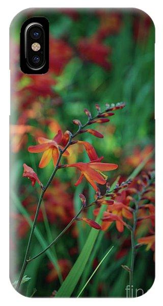 Orange Flowers 8 IPhone Case