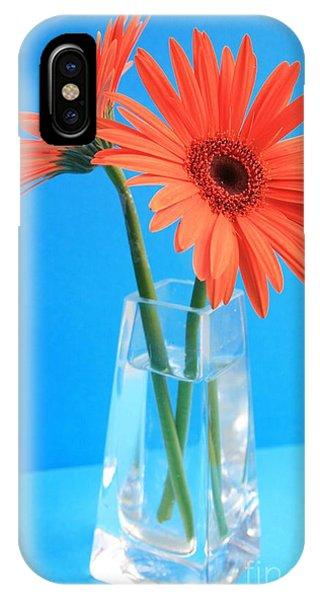 Orange Gerberas In A Vase - Aqua Background IPhone Case