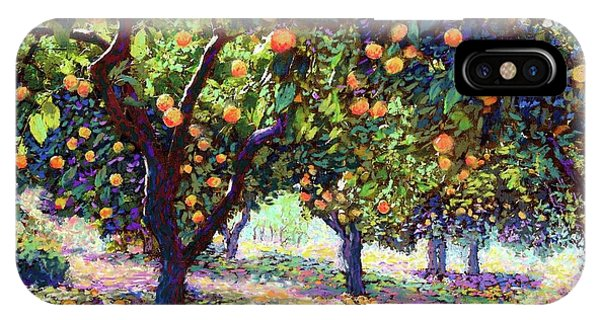 Sun iPhone Case -  Orange Grove Of Citrus Fruit Trees by Jane Small