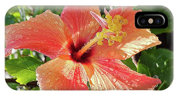 Orange Hibiscus IPhone Case