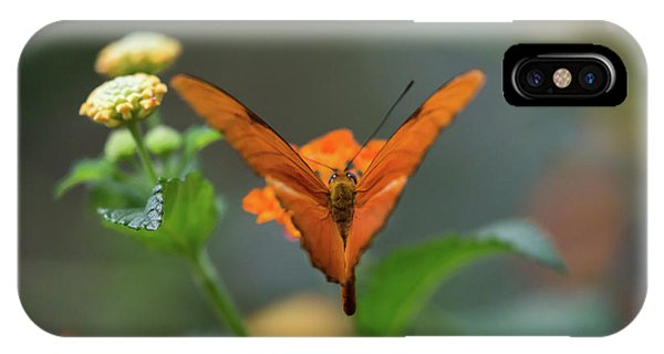 Orange Is The New Butterfly IPhone Case