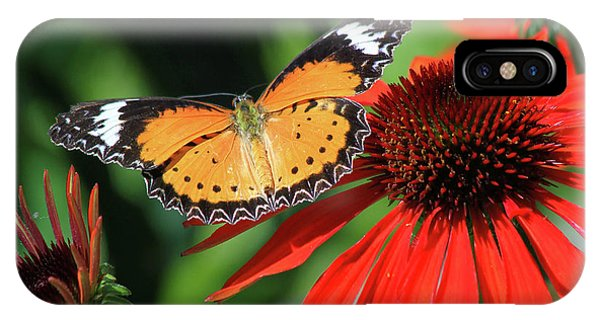 Orange Lacewing IPhone Case