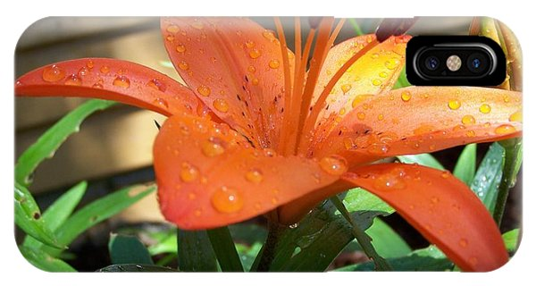 IPhone Case featuring the photograph Orange Lilly by Richard Ricci