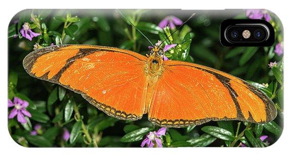 Orange Longwing IPhone Case