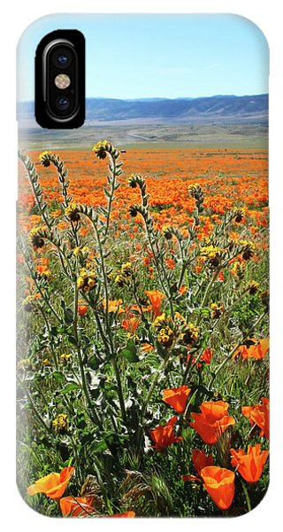 Sky iPhone Case - Orange Poppies And Fiddleneck- Art By Linda Woods by Linda Woods