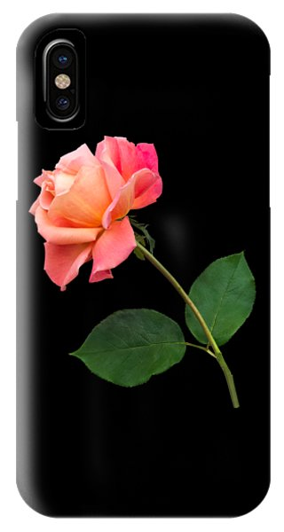 Orange Rose Specimen IPhone Case