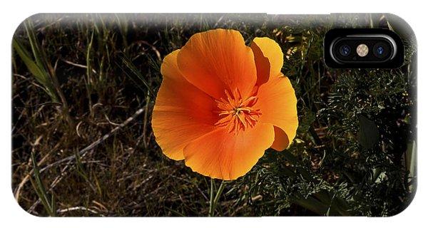 Orange Signed IPhone Case