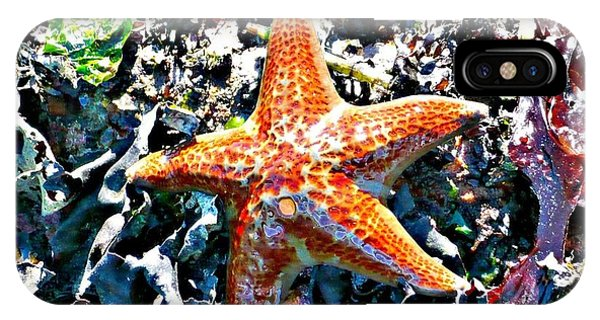 Orange Starfish IPhone Case