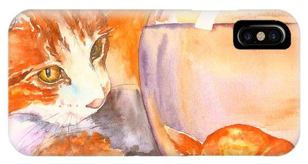 Orange Tabby With Goldfish IPhone Case