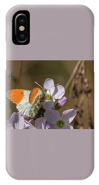 Orange Tip On Lady's Mantle IPhone Case