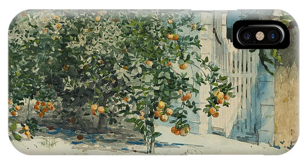 Orange Trees And Gate IPhone Case
