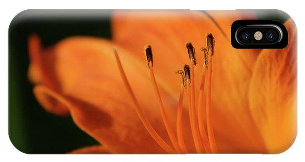 Orange Wave 3096 H_2 IPhone Case