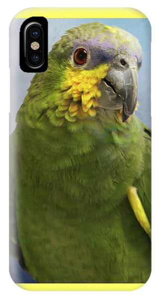 Orange Wing Amazon Parrot IPhone Case