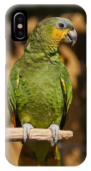 Macaw iPhone Case - Orange-winged Amazon Parrot by Adam Romanowicz