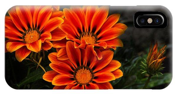 Orange You Glad II IPhone Case
