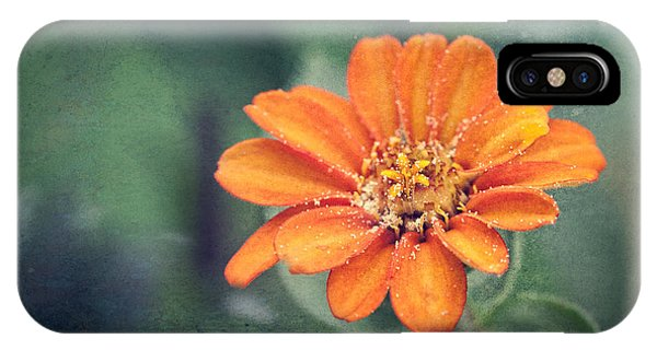Orange Zinnia IPhone Case