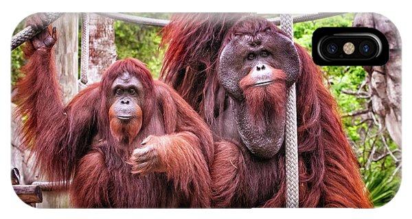 Orangutan Couple IPhone Case