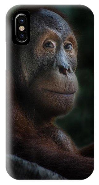 Orangutan Session IPhone Case