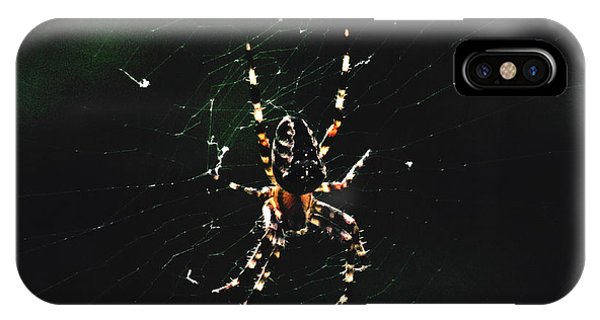 Orb Weaver IPhone Case