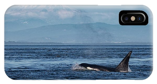 Orca Male With Mt Baker IPhone Case