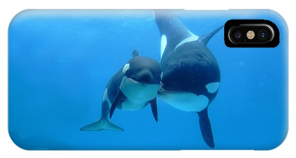Whales iPhone Case - Orca Orcinus Orca Mother And Newborn by Hiroya Minakuchi