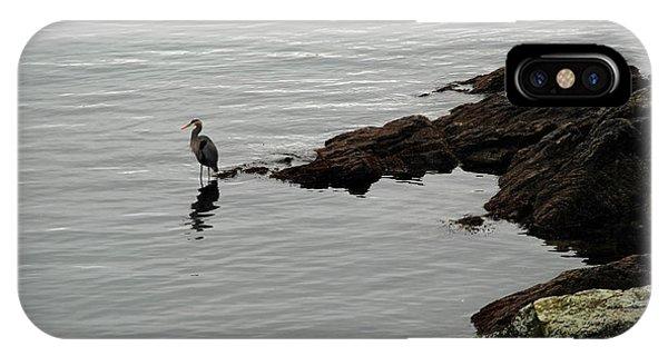 Orcas Island Bird  IPhone Case