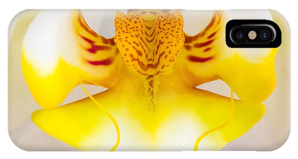 Orchid 1 IPhone Case