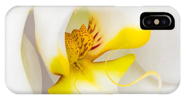 Orchid 4 IPhone Case