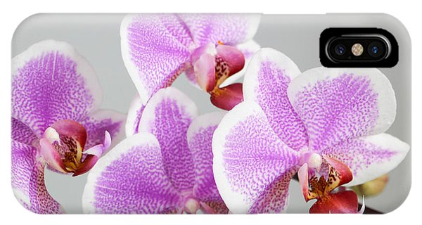Orchid Array IPhone Case
