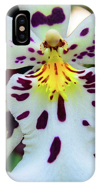 Orchid Cross IPhone Case