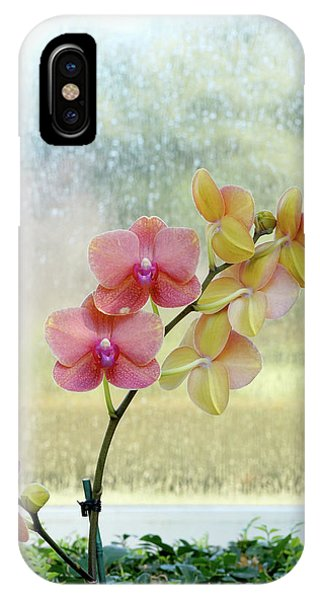 Orchid In Portrait IPhone Case