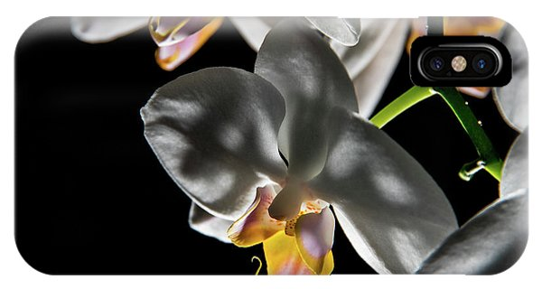 Orchid On Fire IPhone Case