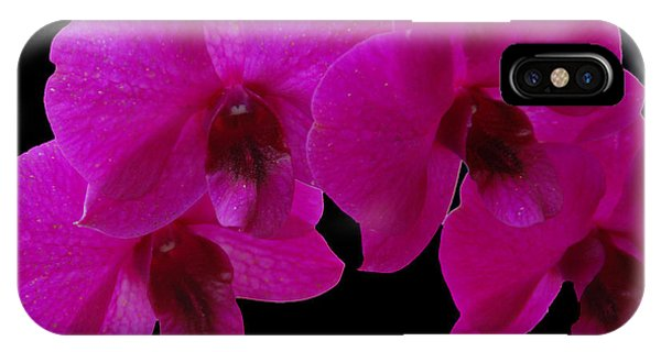 Orchid Song IPhone Case