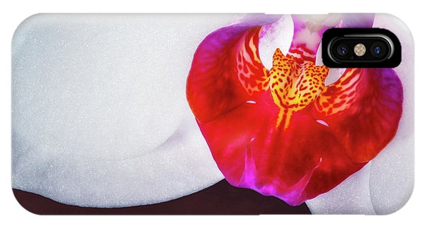 Orchid iPhone Case - Orchid Up Close by Tom Mc Nemar
