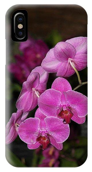 Orchids Alicia IPhone Case